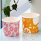 4 oz Custom Printed Disposable Ice Cream Paper Cup With Lid And Spoon